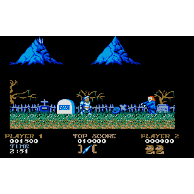 Ghosts'n Goblins (st/win)